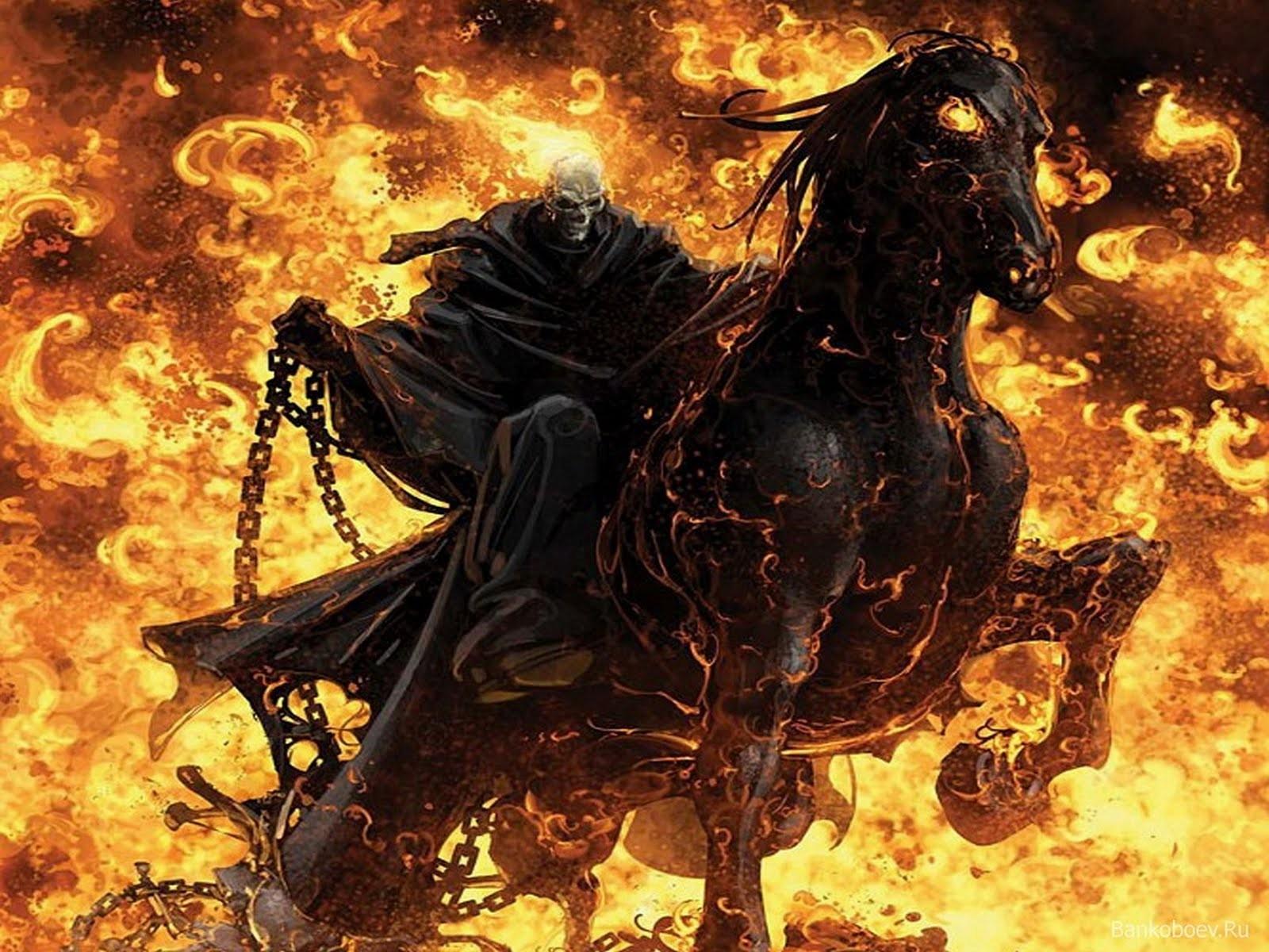 Download Wallpaper Horse Ghost Rider - ghost_rider_fire_skull_wallpaper-normal  HD_796514.jpg