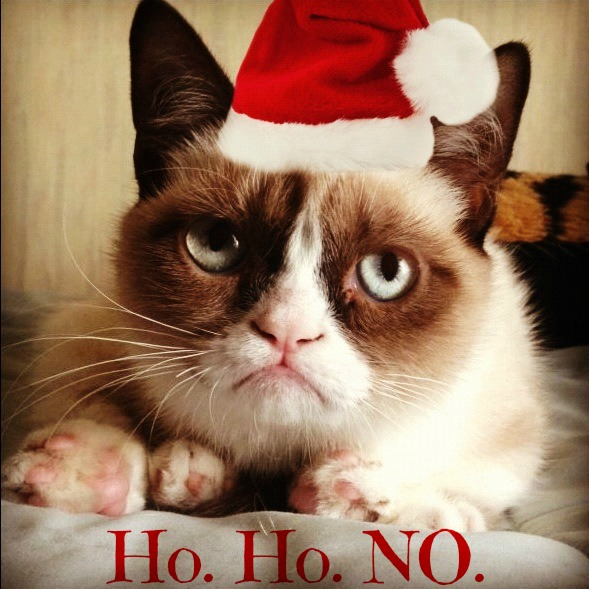 santa hat grumpy cat meme random ramblings of. Black Bedroom Furniture Sets. Home Design Ideas